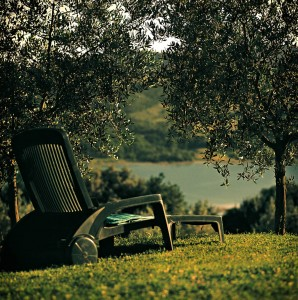 Summer holidays: last minute deals! Agriturismo Toscana Arezzo