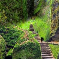 La Verna Hermitage - Sasso Spicco Steps