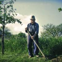 Agriturismo toscano a conduzione familiare