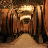 Large_botti_size_oak_barrels_in_Chianti