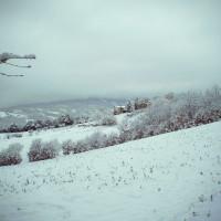 Romantic holidays Christmas Tuscany | Last Minute Arezzo Organic farmhouse