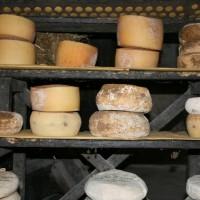cheese-tuscany